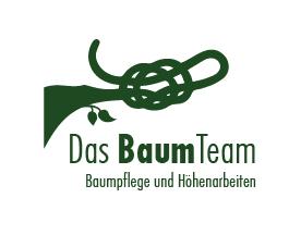 Baumteam-pfalz.de – Baumpflege und Höhenarbeiten